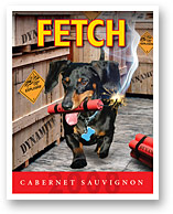 2008 FETCH CABERNET SAUVIGNON